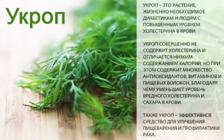 Изображение - Укроп мед и валерьянка от суставов 80-9-26