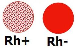 Третья группа крови отрицательный резус-диета