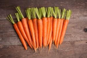 Сырая морковь билирубин