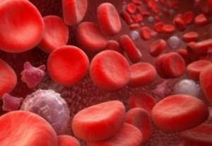 Продукты снижающие тромбоциты в крови