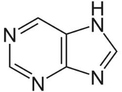 В каких продуктах много содержится мочевой кислоты