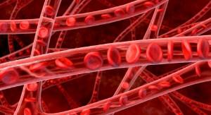 Как привести состав крови в норму