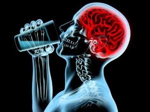 Вред алкоголя для человека Нарушение функций эндокринной системы