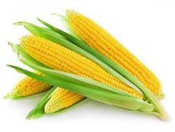 Лечение печени и желудка овощами