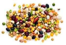 Что надо для эластичности мышц. Продукты для спортивной диеты. Мукополисахаридные продукты для сухожилий и связок