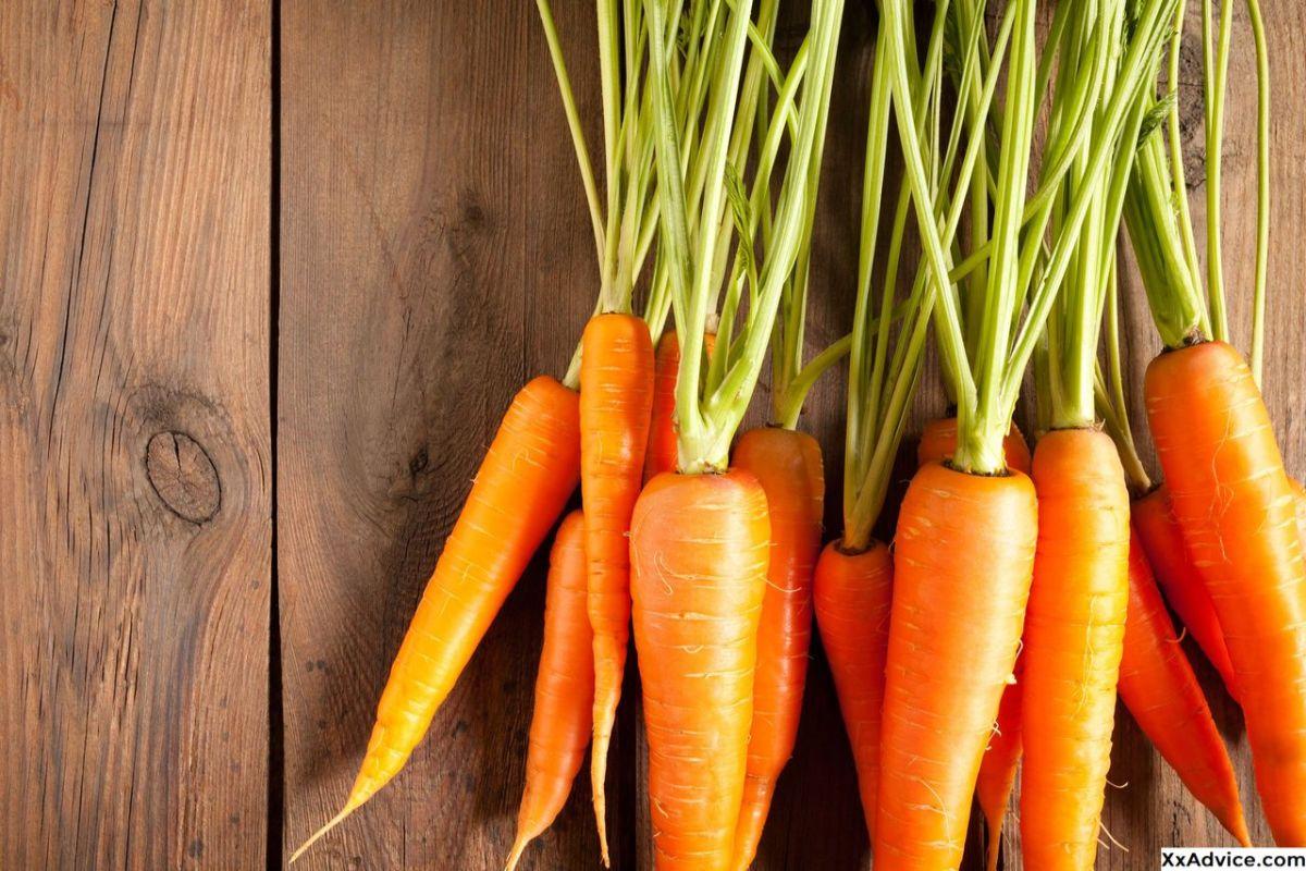 Сушеная морковь: польза и вред