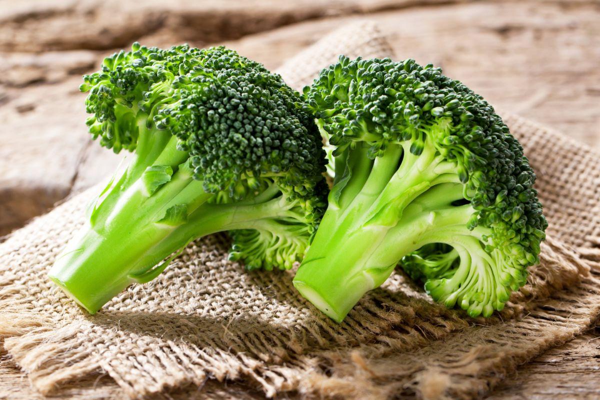 Брокколи капуста польза и вред лечебные свойства