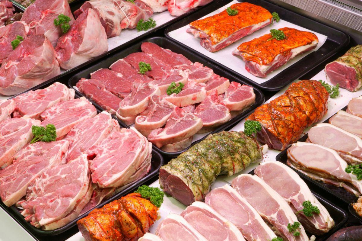 Вред мяса для организма человека научные исследования